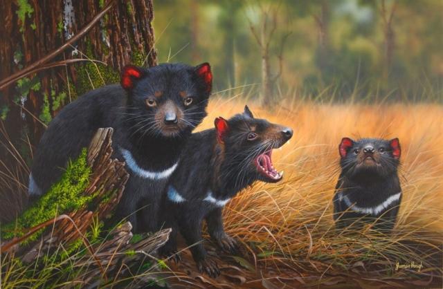 The Devil you Know Tasmanian Devil Painting James Hough