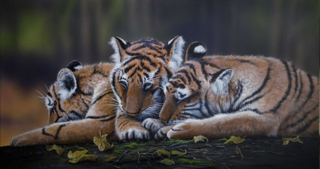 Tiger Cubs Painting James Hough